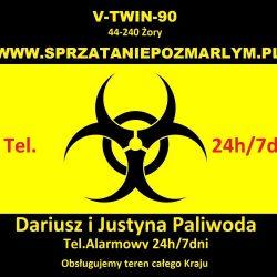 Biohazard_Black_3