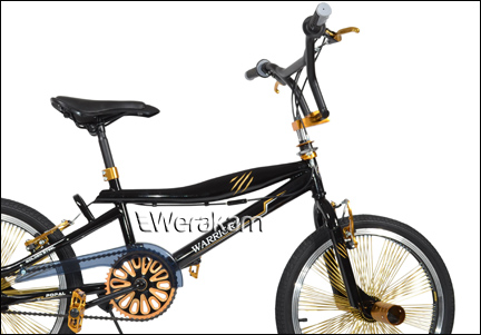 ROWER HOLENDERSKI BMX 20 GOL