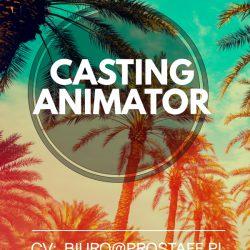 Animator 22.02.2020